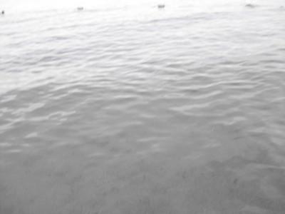 Underwater Photo Attempt