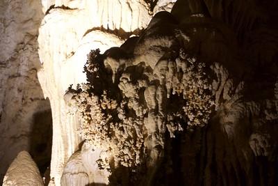 Carlsbad Caverns/ 02/2018