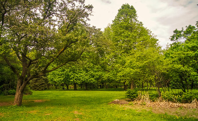 2014-05-27_Edward_Gardens_016