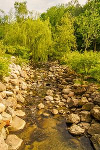 2014-05-27_Edward_Gardens_026
