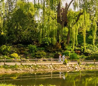 2014-05-27_Edward_Gardens_006