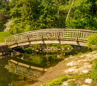 2014-05-27_Edward_Gardens_003