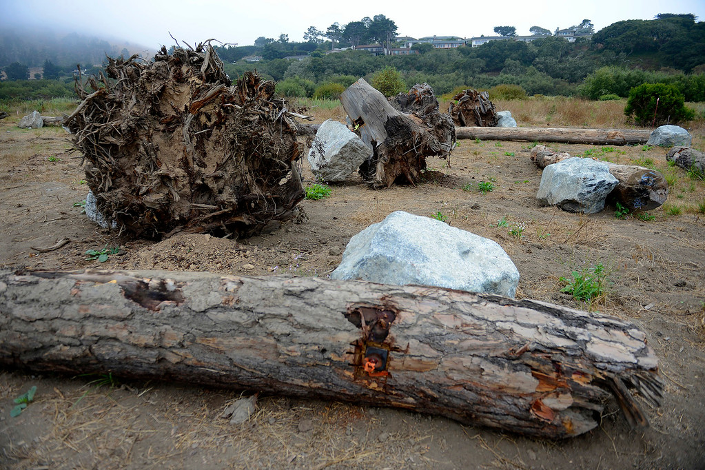 . Boulders, logs and root structures near the Carmel River on Tuesday, Aug. 29, 2017.   Brian LeNeve, president of the Carmel River Steelhead Association will oversee a habitat improvement plan for the federally protected steelhead trout in the lower Carmel River.  (Vern Fisher - Monterey Herald)