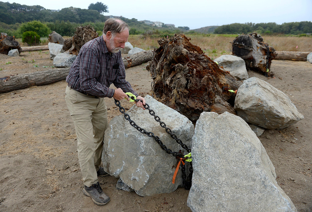 . Brian LeNeve, president of the Carmel River Steelhead Association with some of the rock anchors and redwood tree root structures that will be used in a habitat improvement plan for the federally protected steelhead trout in the lower Carmel River.  (Vern Fisher - Monterey Herald)