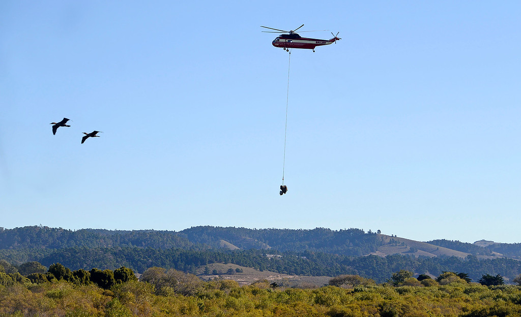 . A helicopter was used to place large boulders, root balls and logs in the Carmel River estuary on Wednesday, Oct. 25, 2017 in an effort to improve fish habitat for the federally protected steelhead trout.  (Vern Fisher - Monterey Herald)