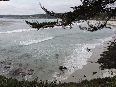 Carmel-by-the-sea 7-17