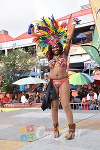carnival_monday_2015_2015244