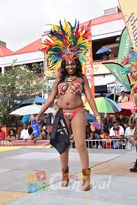 carnival_monday_2015_2015242