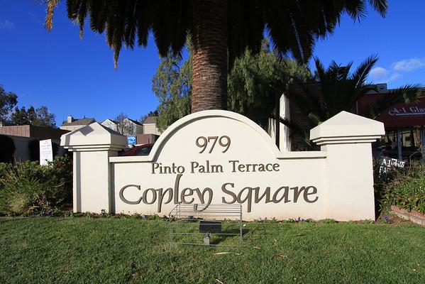 979 Pinto Palm Terrace, Sunnyvale #19