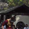 10-6-2012 Renaissance Festival 1226