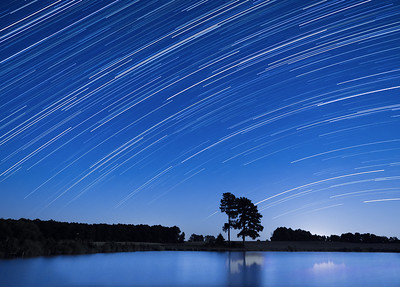 The Stargazers..
