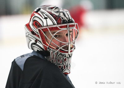 Cam Ward (new mask)