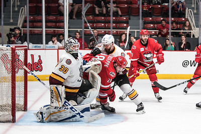 April 21, 2017. Charlotte Checkers vs Chicago Wolves, Bojangles Coliseum, Charlotte, NC. Copyright © 2017 Jamie Kellner. All Rights Reserved.