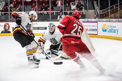 April 20, 2017. Charlotte Checkers vs Chicago Wolves, Bojangles Coliseum, Charlotte, NC. Copyright © 2017 Jamie Kellner. All Rights Reserved.