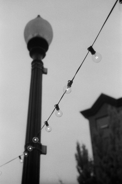 NC, Asheville, November 2012, iiif Summar Tri-X 400