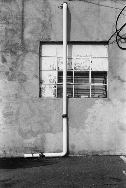 NC, Asheville, January 2013, iiif Summar Tri-X 400