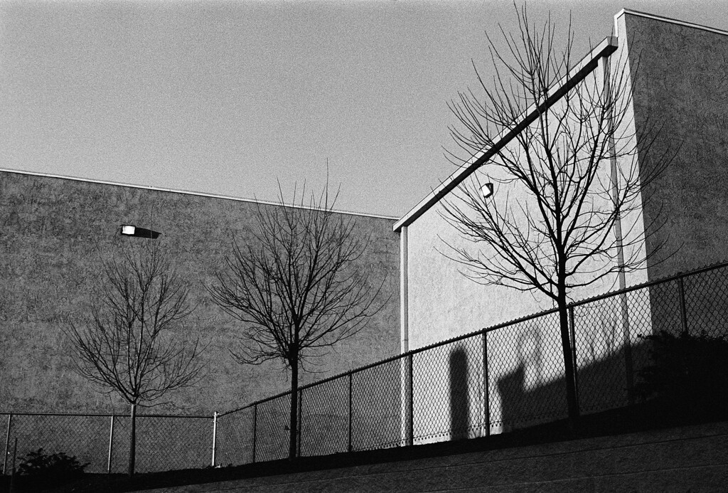 NC, Asheville, January 2014, ZM-50 Tri-X 400