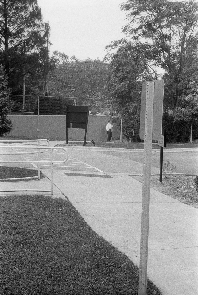 Asheville, NC, October 2013, iiif Summar Tri-X 400