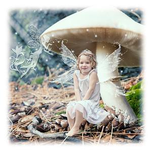 Heidi_Mushroom_2