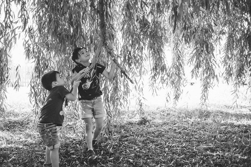 Fotografia de familia navarra 12