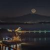 Good Night New Moon