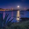 Moonlit Dawn