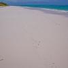 8 mile baech, Cat Island, Bahama