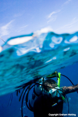 Diving in Cat Island, Bahama