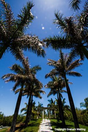 Near Taino Beach Grand Bahama