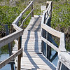 Footbridge in Lucaya National Park, Grand Bahama Grand Bahama