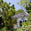 Garden of the Groves Grand Bahama