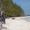 Beaches of the Grand Bahamas Grand Bahama