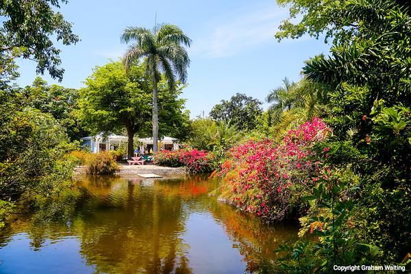 Grand Bahama, Garden of the Groves