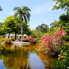 Grand Bahama, Garden of the Groves