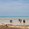 Kite flying on beach Bahama with dog doing doo-doo