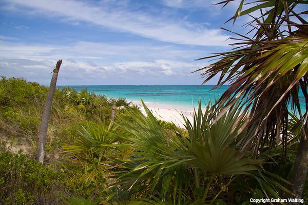 At Greenwood resort, Cat Island, Bahama