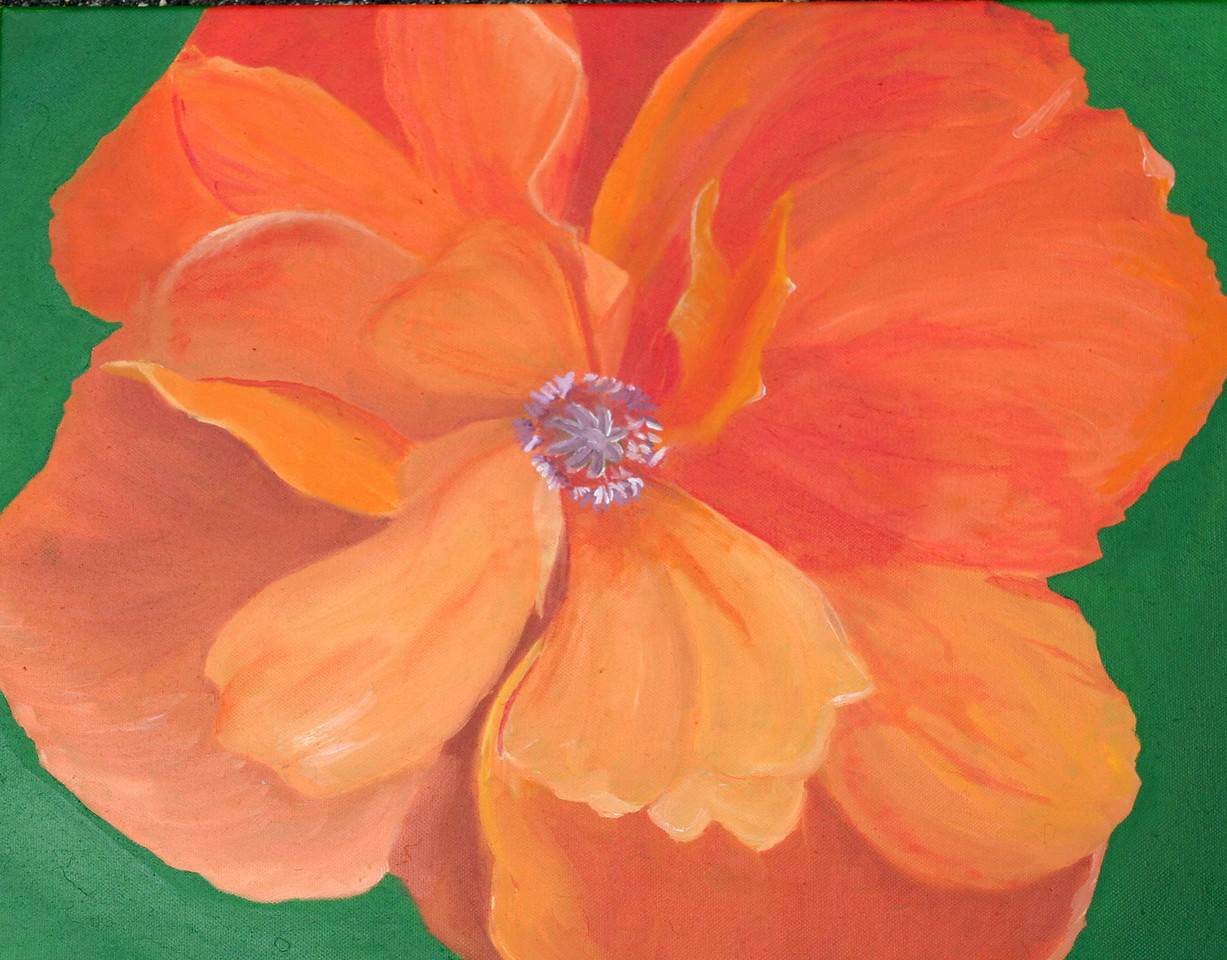 - Poppe love - 06-2006   Oil on Canvas <br />  A friend directed me towards Poppes as my next venture. This varies a bit from the original in coloring as I'm in love with all things orange and that just sort of came out as I worked.<br /> Favorite parts for me: The colors, and the lower left hand leaf set behind.<br /> As I continue my paintings, I come to realize more and more that my passion is in the colors.  While subject is always important, it is the colors of things that most attract me to them. Being able to wrangle with a color wheel in my mind and mix shades on a palette are what make painting interesting.  The results of that work are, in my opinion, the main draw for the majority of my works.
