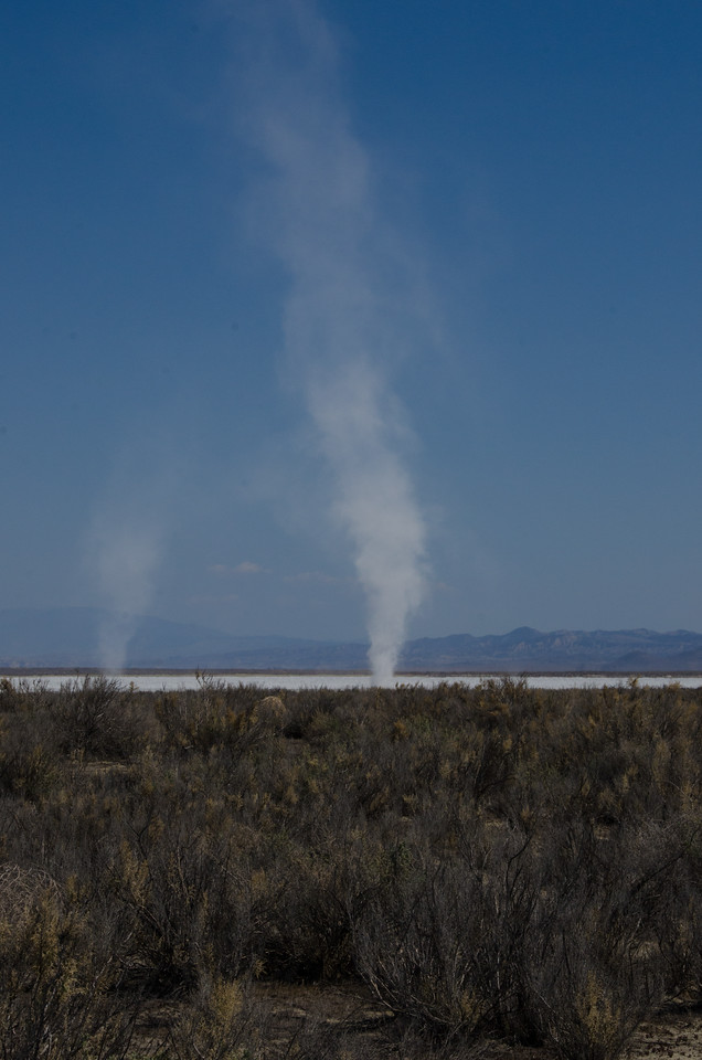 """Soda devil"", Carrizo Plains"