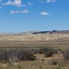 California Grasslands