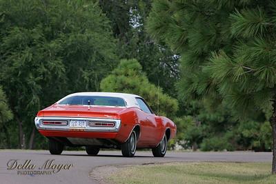 Gena's car 021