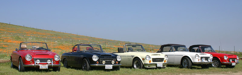 More California Poppy Reserve (same cars)