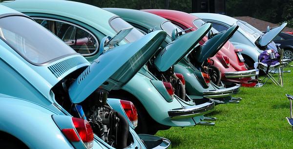 2009 VW Show