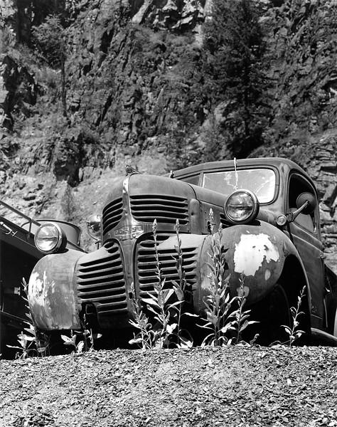Dodge Truck    I