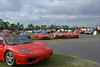 Lined up everywhere, these are in a field next to the skidpad. Hundreds of Ferrari's