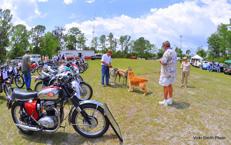 Seemed like half the crowd brought dogs which led to lots of funny moments. I watched one pull over a loaded table he was tied to, do a backflip to slip his collar and lead his owners on a weiner dog chase past the DJ and down the lane.  The dog watching was excellent!