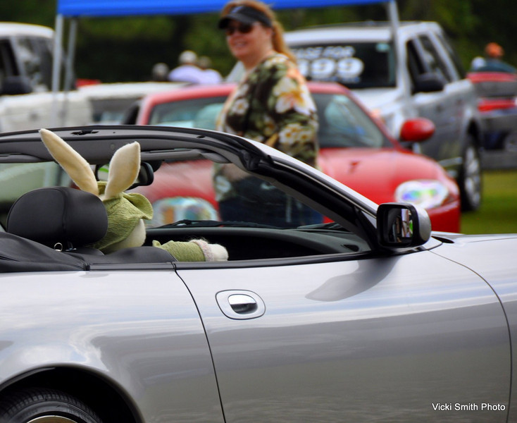The day after the show is Easter, otherwise it might seem strange to see a big bunny driving by