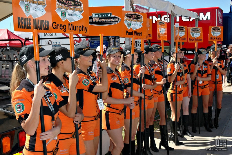 All of the Grid Girls.
