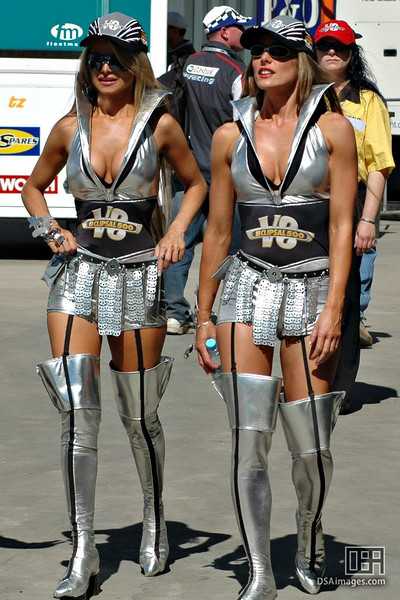 The one and only, silver Clipsal Girls.<br /> (If you look closely, you might see a little clevage)