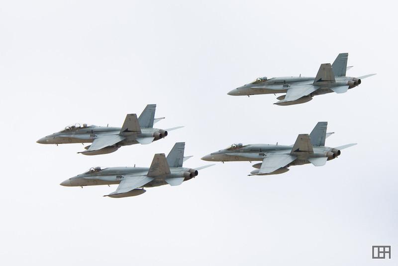 Four Hornets