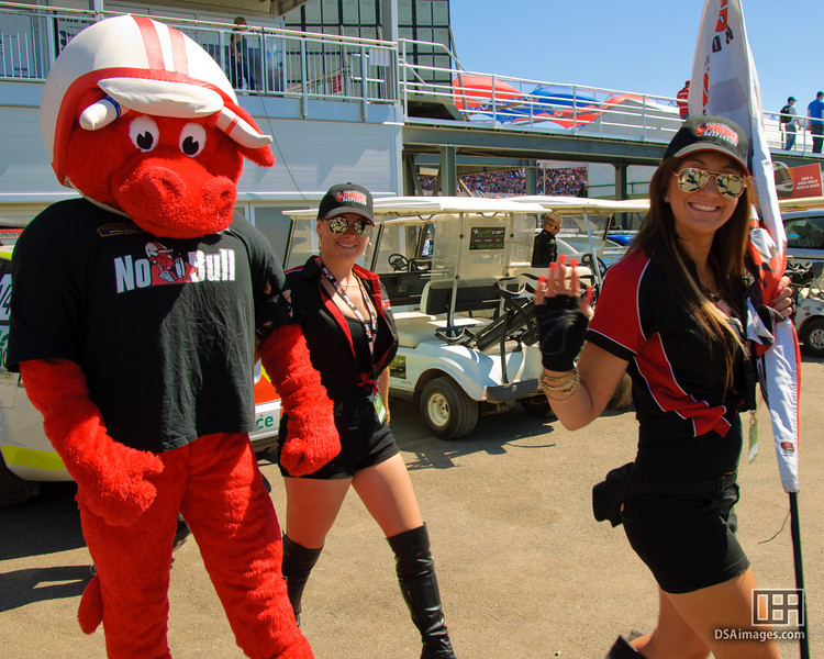 Pedders Suspension Girls and mascot